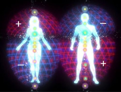 What are the Aura Toroidal Fields?